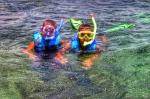 Snorkeling Dry Tortugas